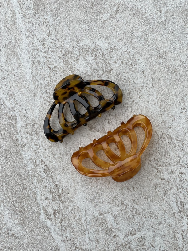 Butterfly hairclaw Tortoise
