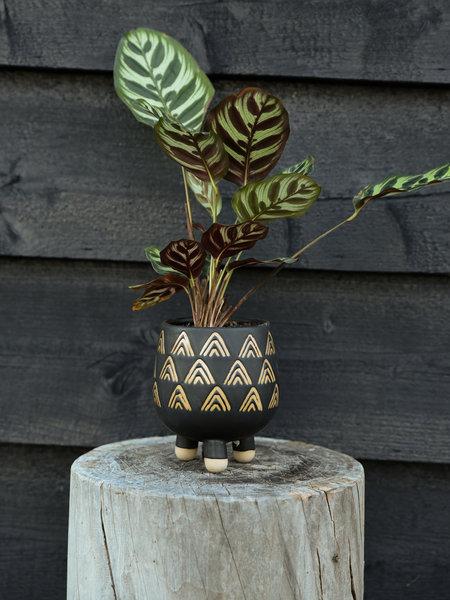Sass & Belle Wax Resist Triangles Black Leggy Planter