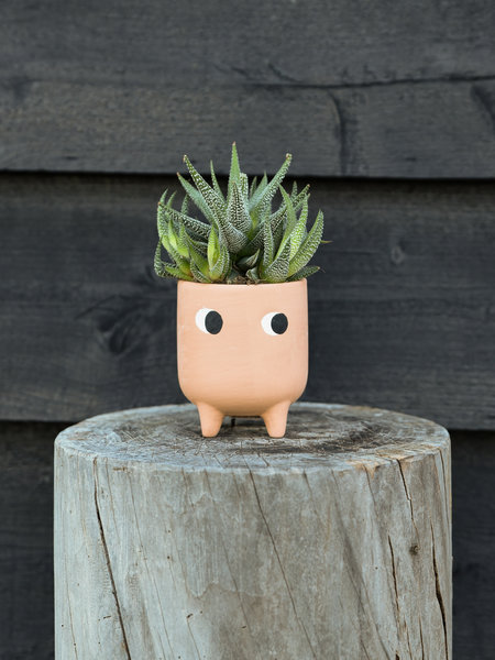 Sass & Belle Planter Little Leggy Terracotta Mini