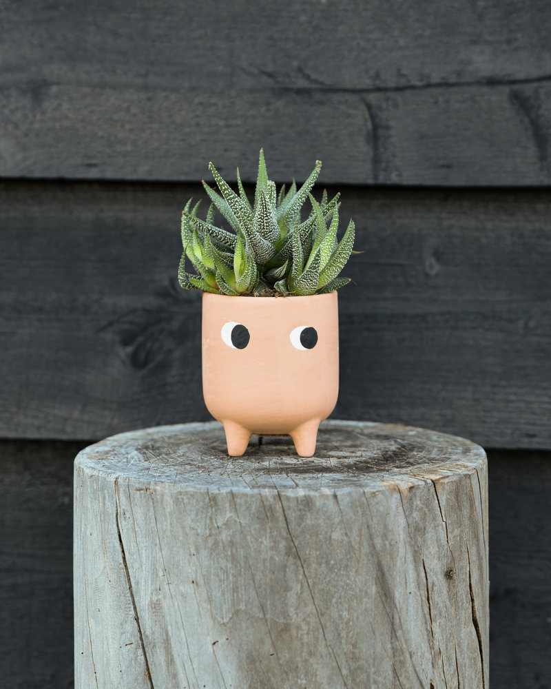 Planter Little Leggy Terracotta Mini