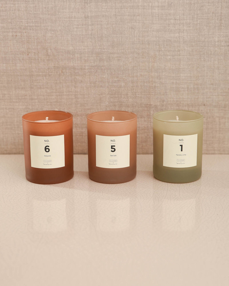 Fragrance Candle Sequoia NR. 6