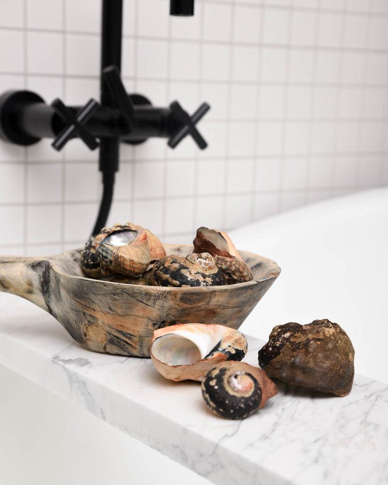 Sea Slug Shell (SET OF 2)