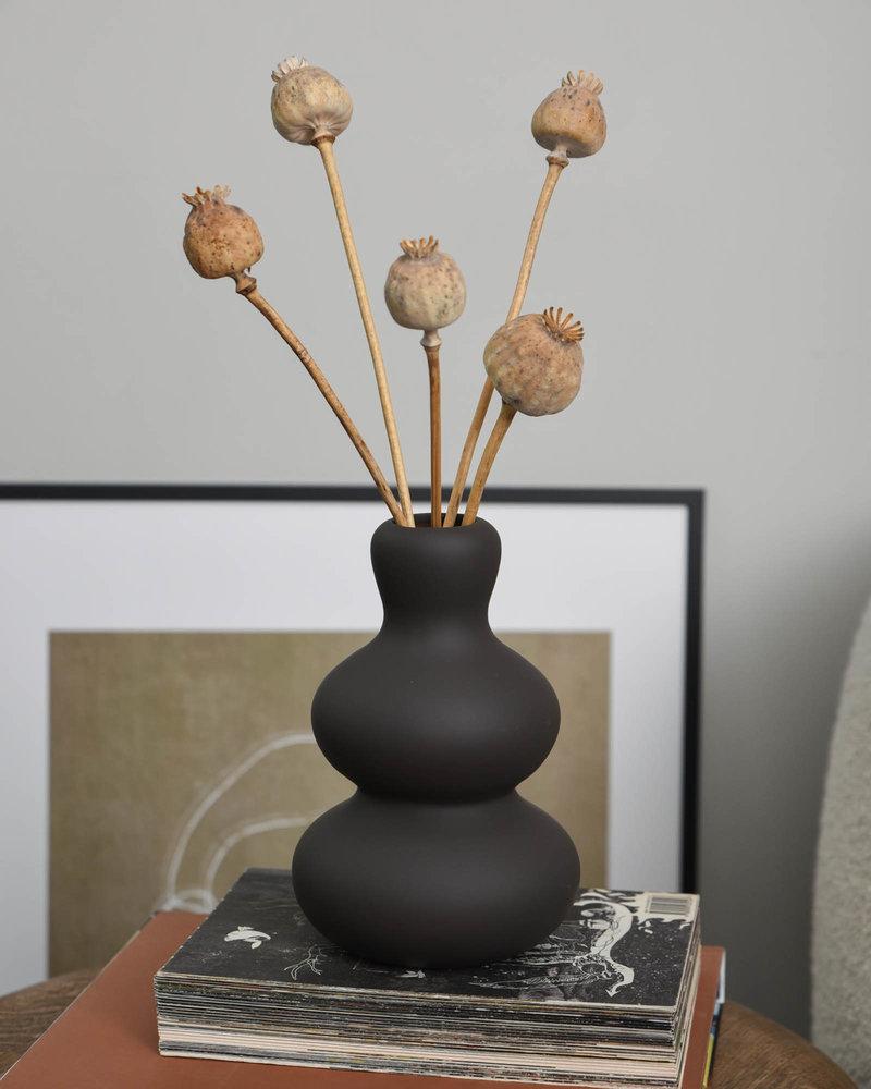 Dried Poppy Flower