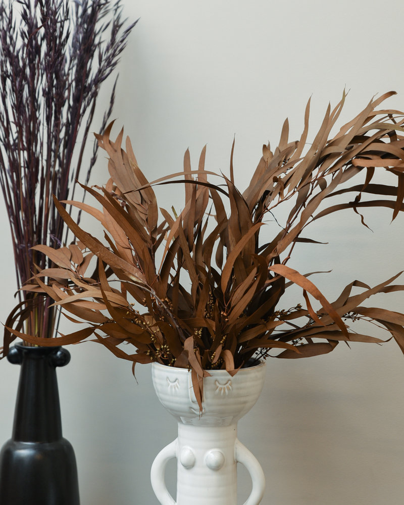 Dried Flowers Brown - Eucalyptus