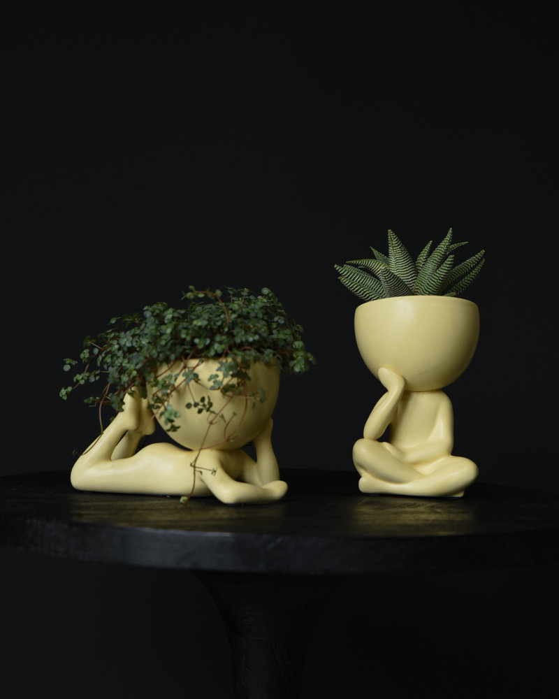 Planter Lucy
