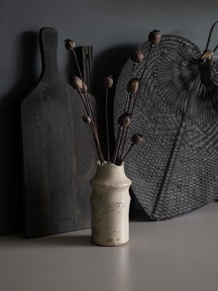 Van der Velde Deltaflower Dried Flowers - Poppy Dark Brown
