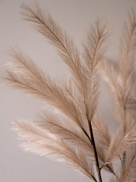 Van der Velde Deltaflower Faux Plume Twig Beige