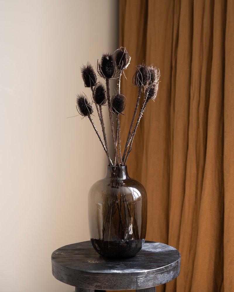 Dried Flowers Black - Cardi Stella