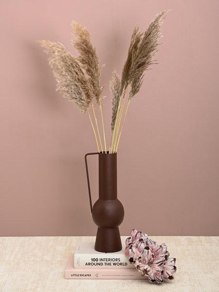 Eurolight Living Dried Flowers Beige -  Dwarf Pampas Grass