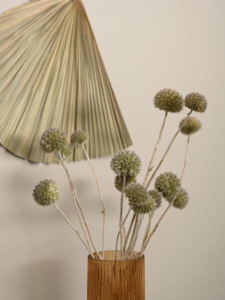 B&B Trend Company Dried Flowers Green - Eryngium Natural