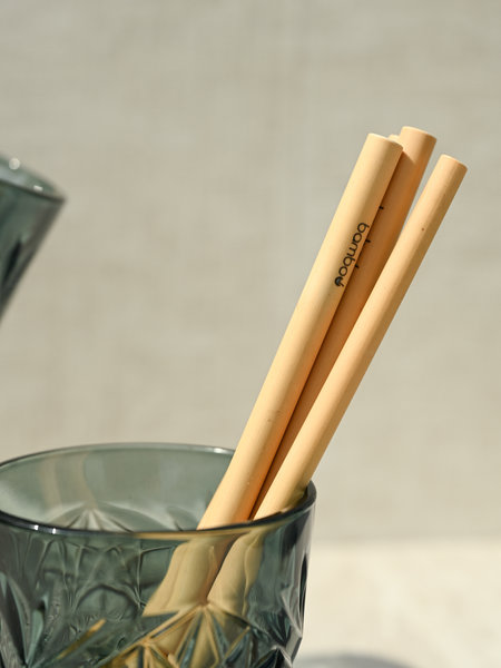 Libbey Bamboo Straw (SET OF 5)