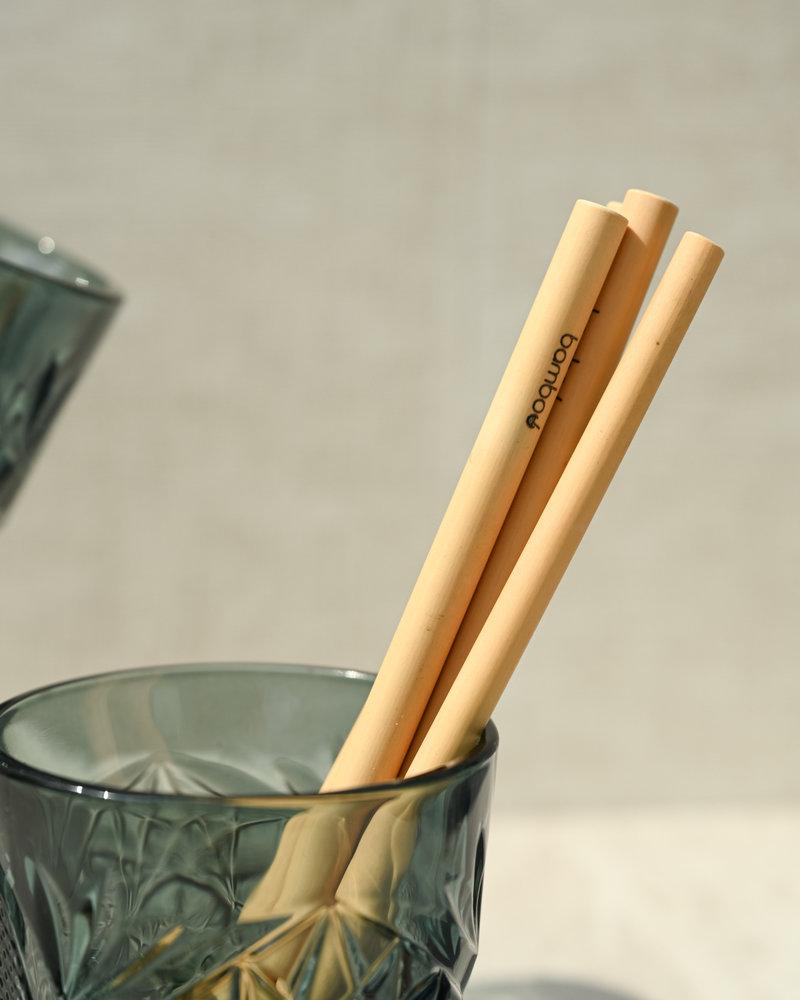 Bamboo Straw (SET OF 5)