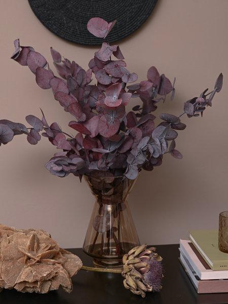 B&B Trend Company Dried Flowers - Red Eucalyptus