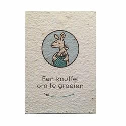 Groeikaart Kleine Kanga