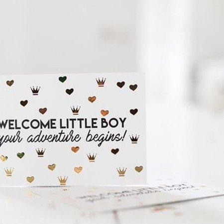 By Bird Welcome Little Boy