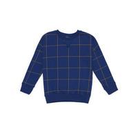 Sweater blauw met ruitje