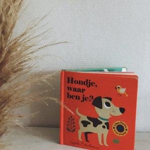 Boeken Hondje, waar ben je? Flapjesboek