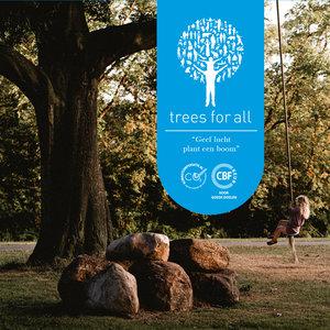 Donatie | Bijdrage om bomen te planten