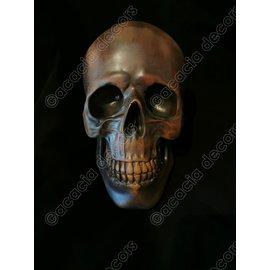 Crâne - Cuivre - résine