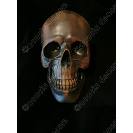 Skull - Copper - Resin