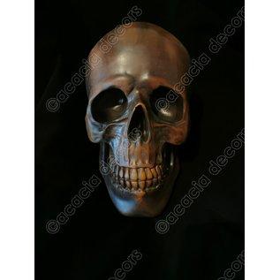 Crâne - Cuivre résine