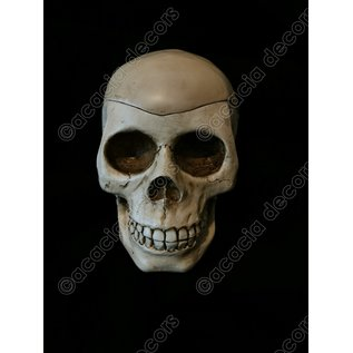 Crâne - Cendrier