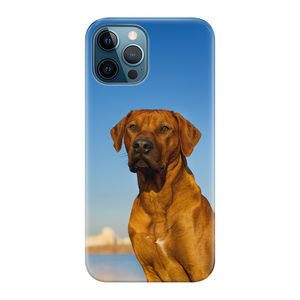 Telefoonhoesje iPhone 12 Pro Max