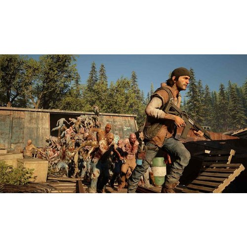 Sony Days Gone PS4