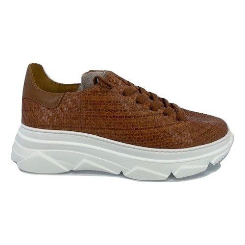 Stokton Stokton sneaker 752-D-SPI9A tan