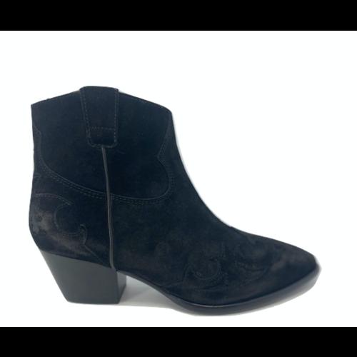 ASH ASH boot HARLOW01