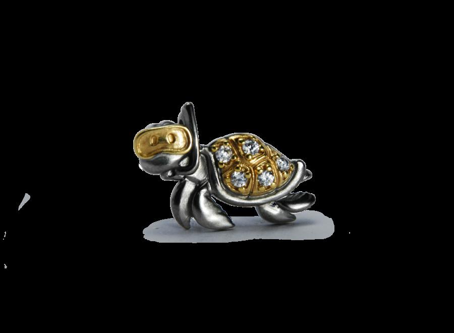 Turtle met steentjes