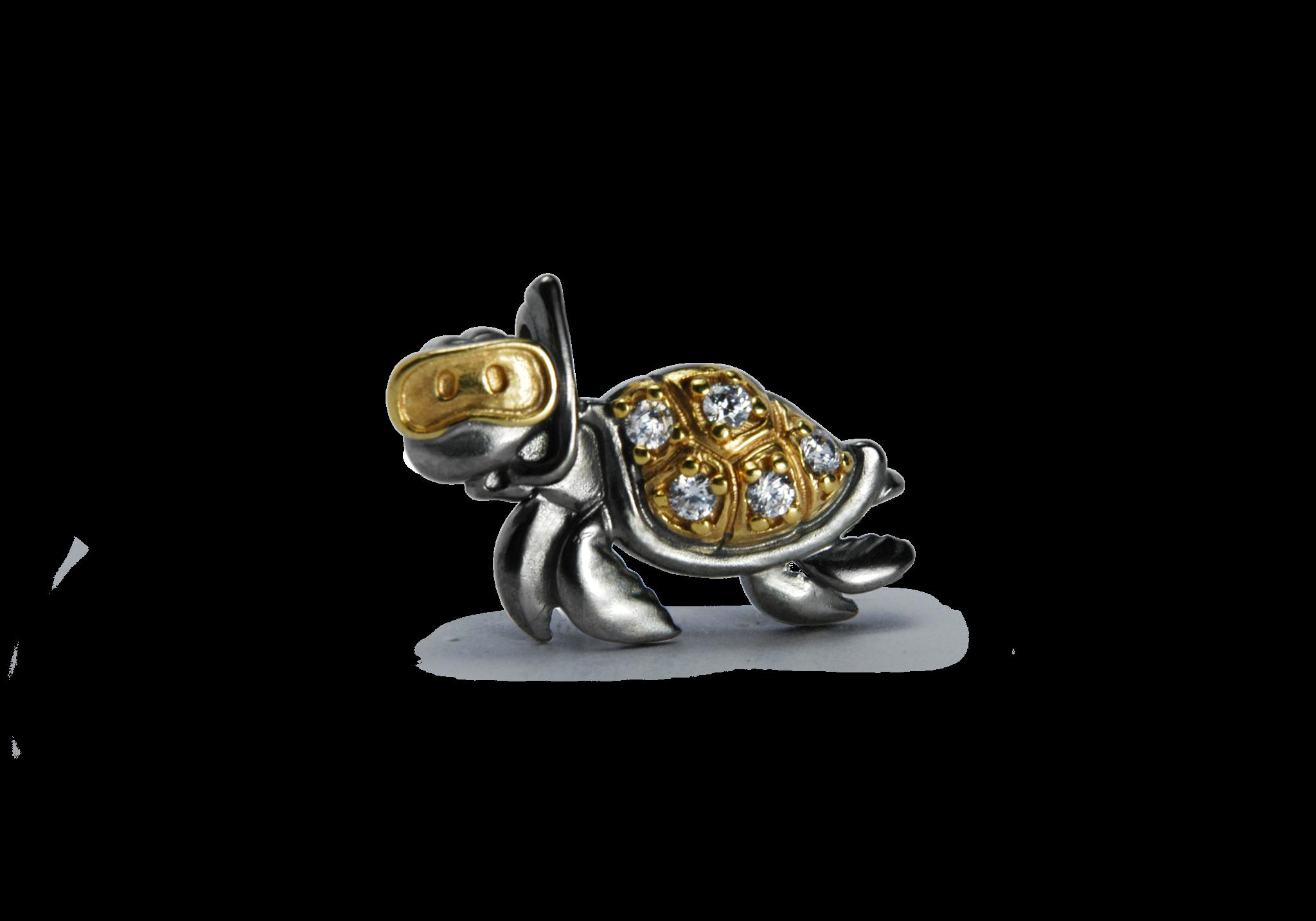 Turtle met steentjes-1