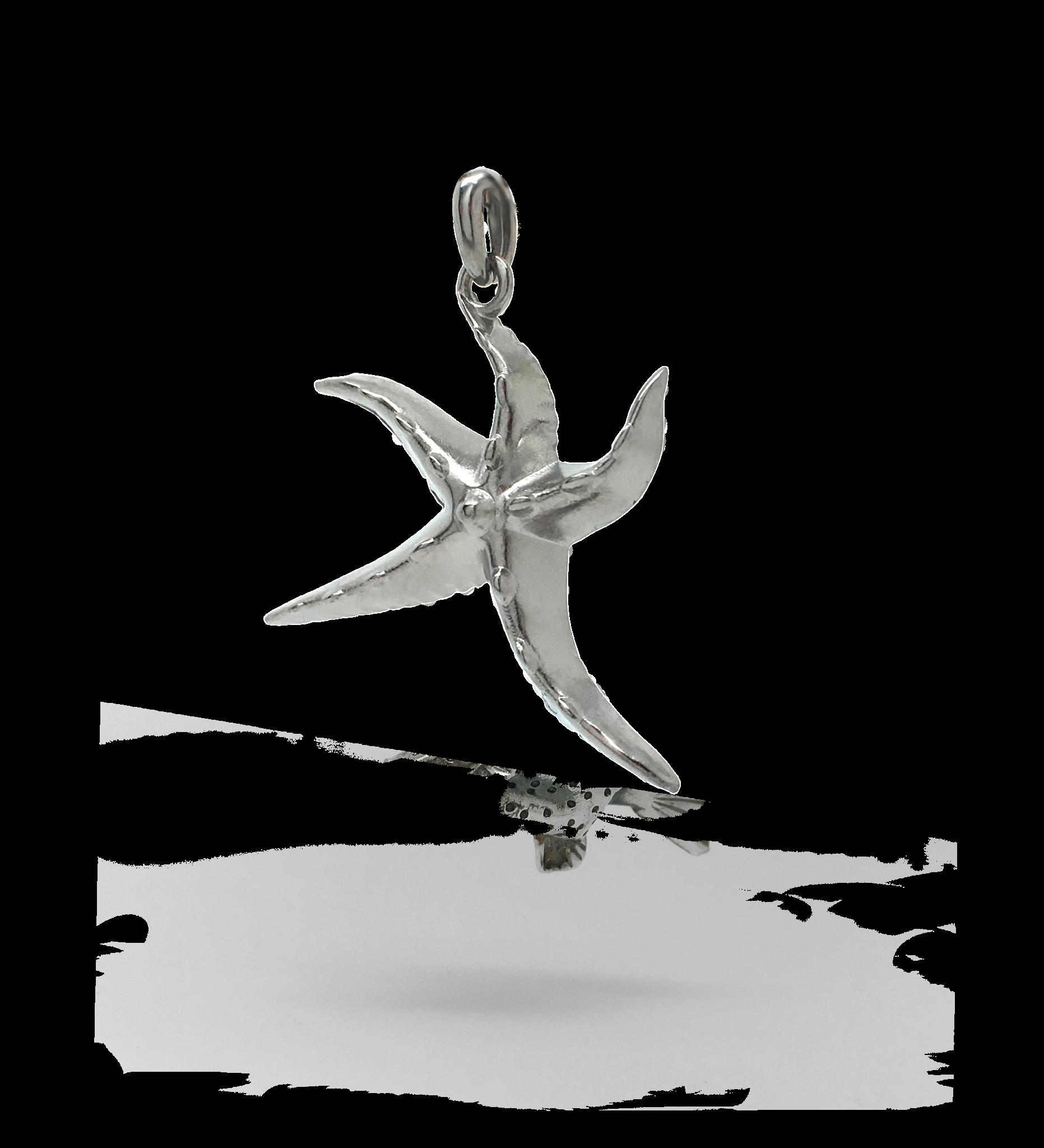 Sea Star Zilverkleurig-1