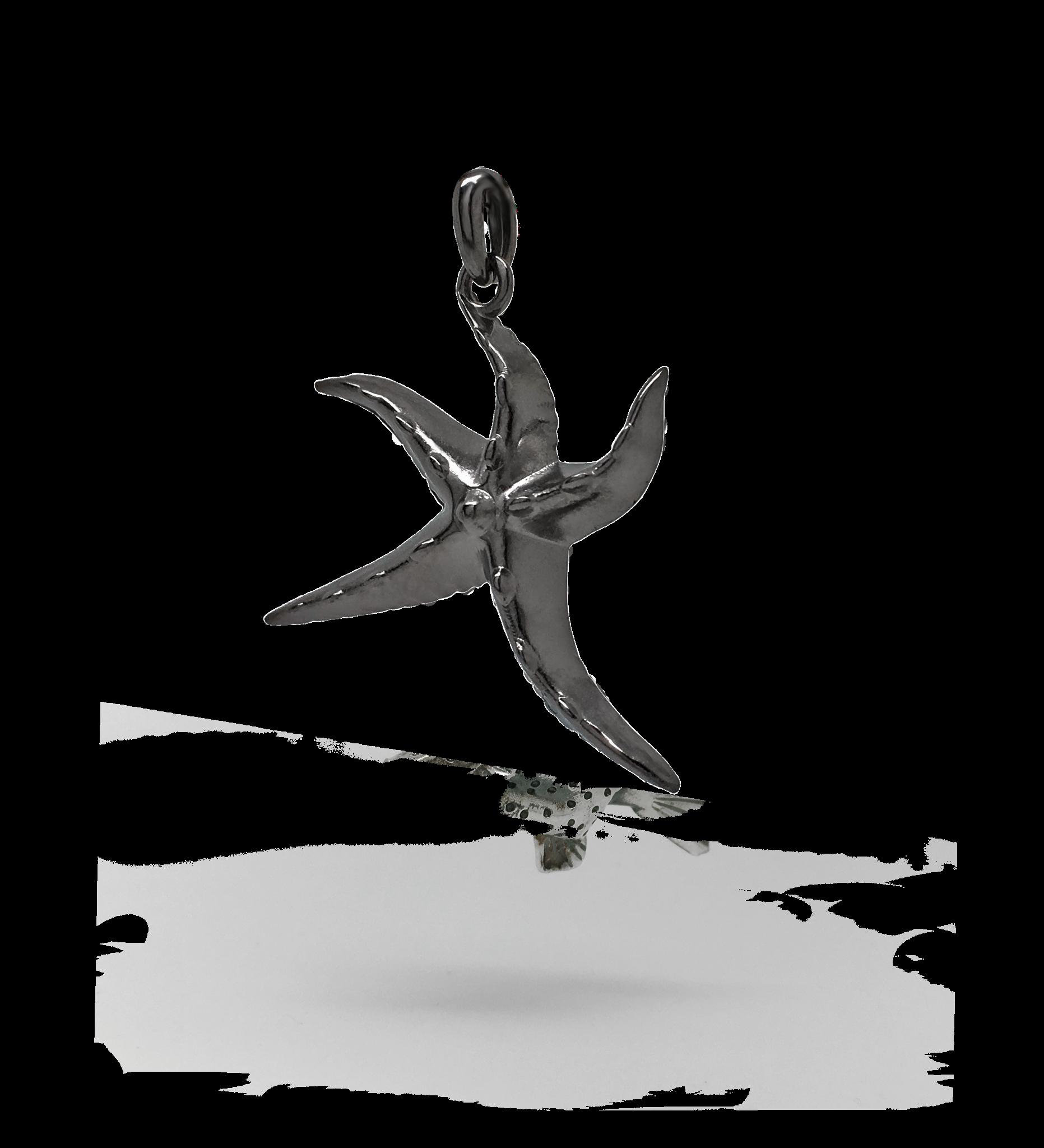 Sea Star Bronskleurig-1