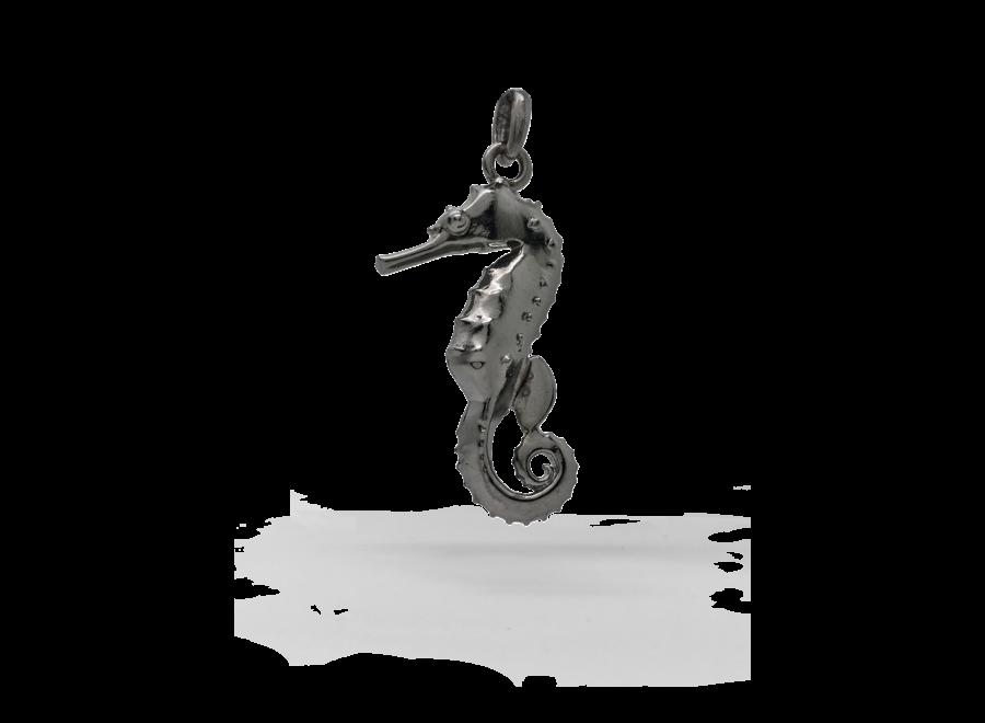 Hippocampus Bronskleurig