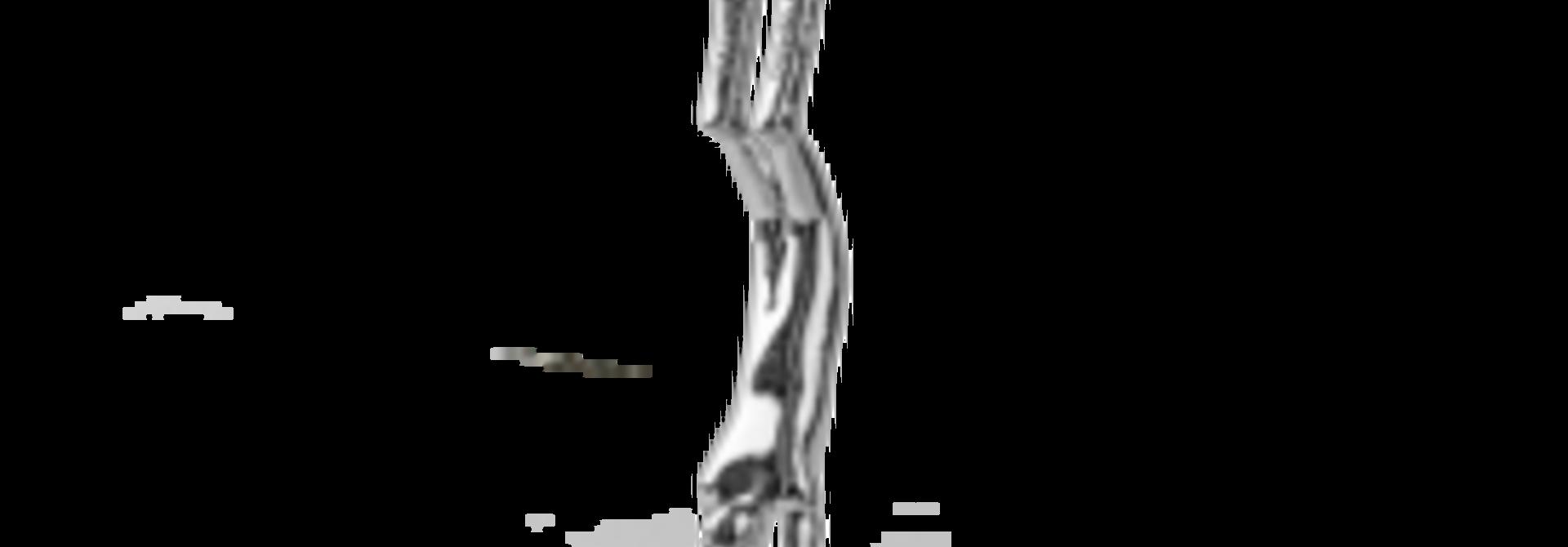 Freediving Zilverkleurig