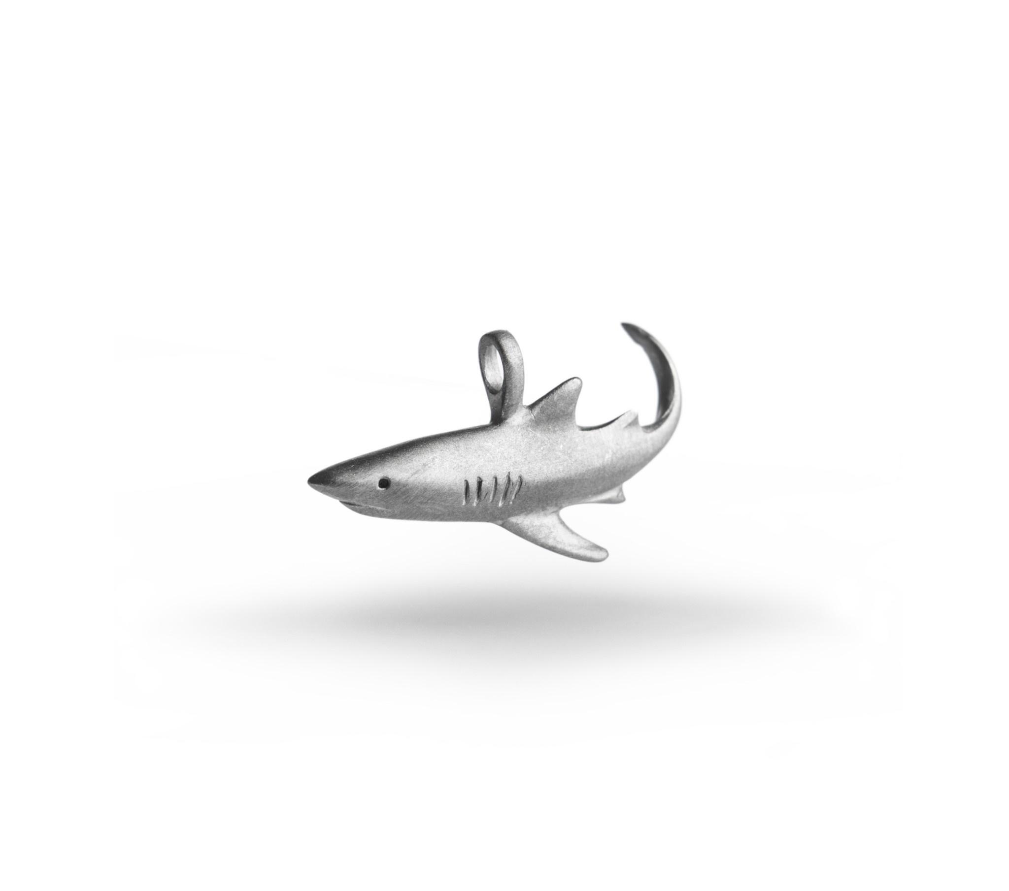 Longimanus Shark-1