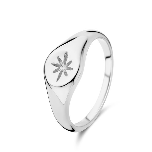 May Sparkle Summer Breeze Rose silver colored ring