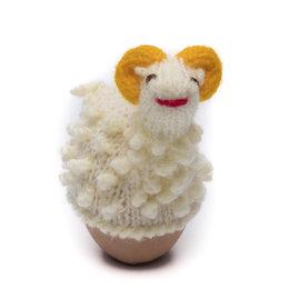 Egg-cosy ram