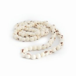 Necklace natural nuts (white) , long