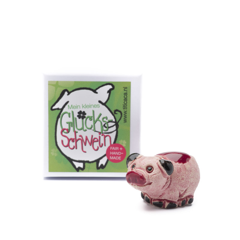 Lucky piglet in box
