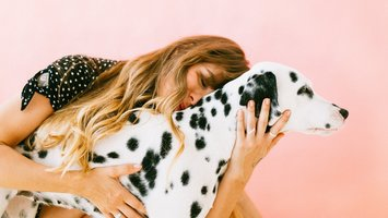 Hondenbelasting wordt steeds vaker afgeschaft!