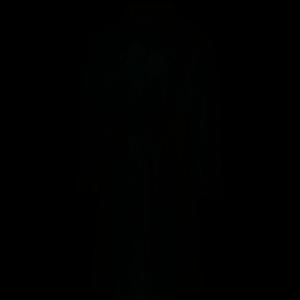 Willex Trenchcoat Zwart L