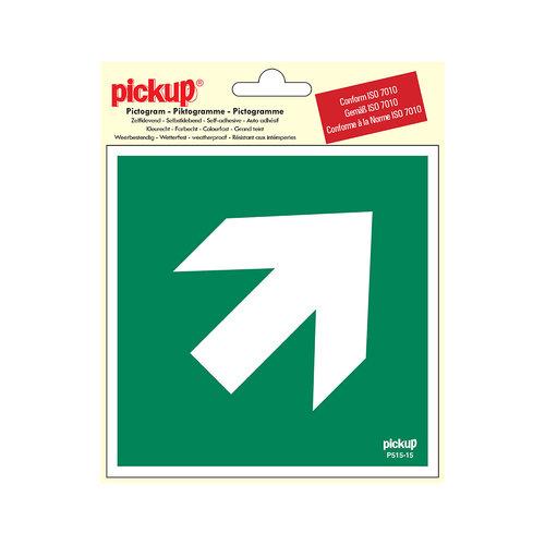 Pickup Pictogram Vinyl 15x15cm Richtingspijl 45