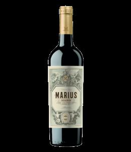 Bodegas Piqueras Bodegas Piqueras Reserva 'Marius' 2016