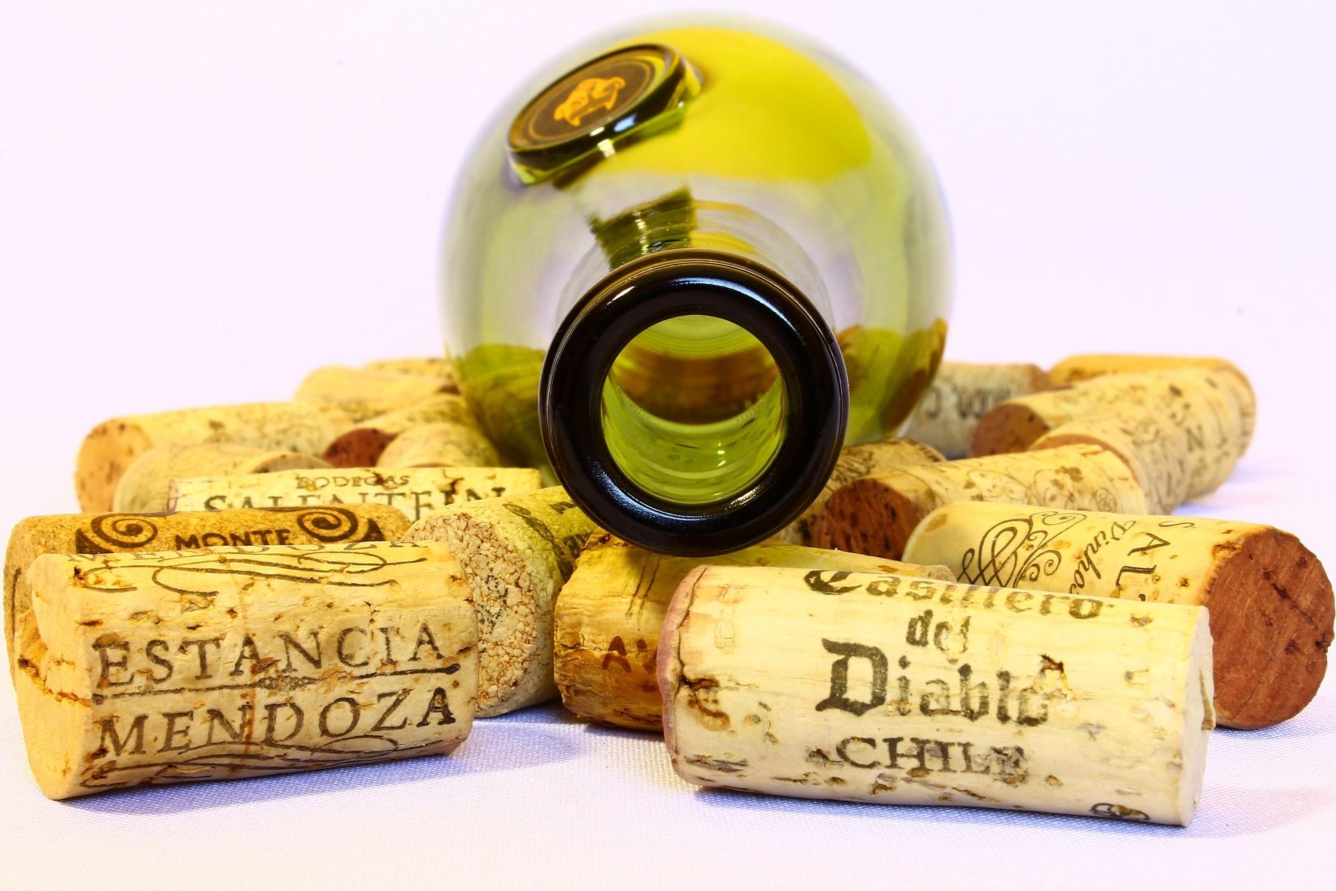 stap voor stap wijnproeven
