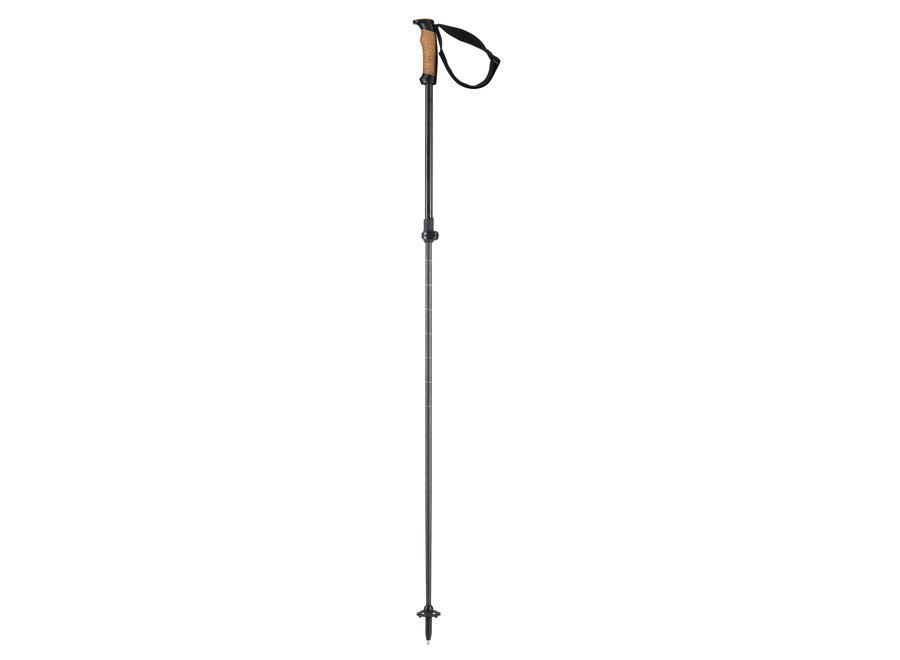 Voyager Pole Vario