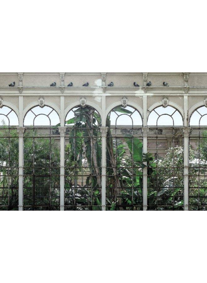 Behang Dove Gardens