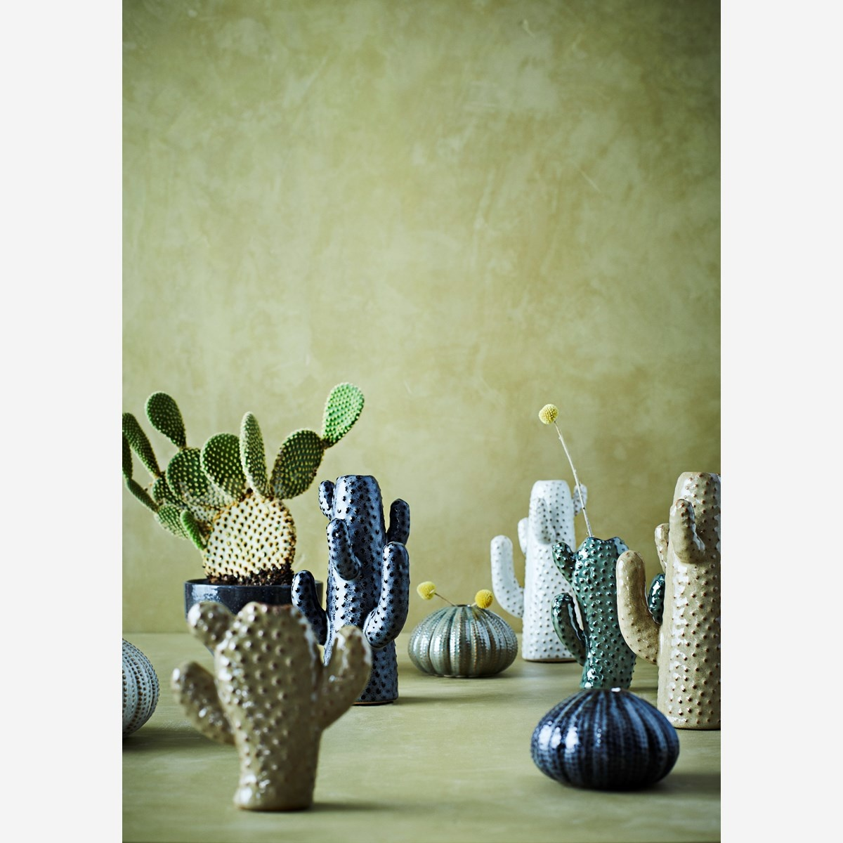 Vaas cactus 11x12cm Beige-2