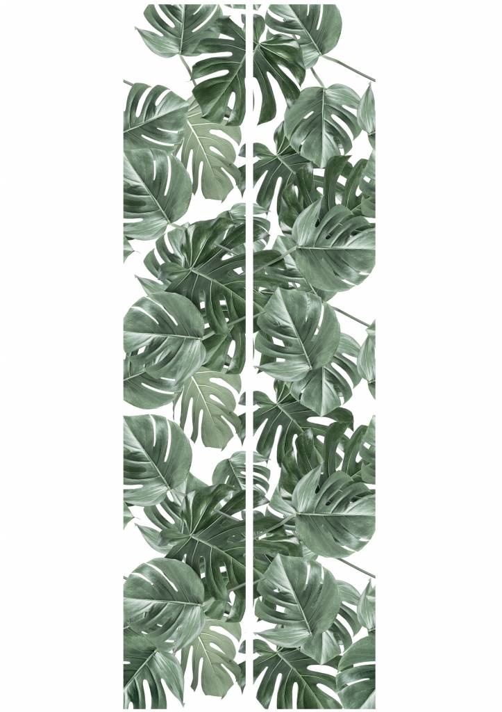 Behang 2 strook Botanical Monstera 97.4x280cm-5